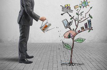 Guia do Gerente de Projetos! 4 dicas para ser um excelente profissional