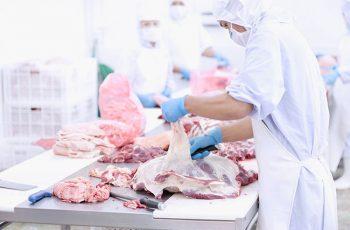 Papelão na carne? Digo, no projeto? Como a falta de planejamento pode ter afetado centenas de produtores de carne no Brasil