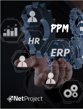 Integração ERP com PPM, aspectos técnicos