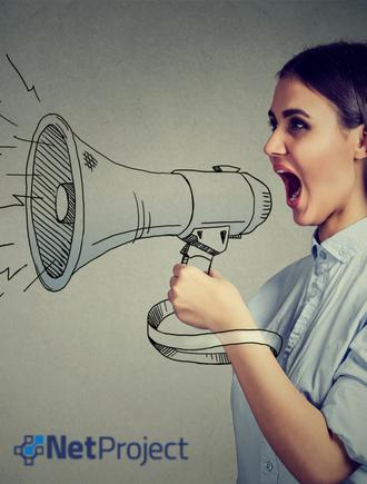 Adaptabilidade e Comunicação não Violenta na Gestão de Projetos